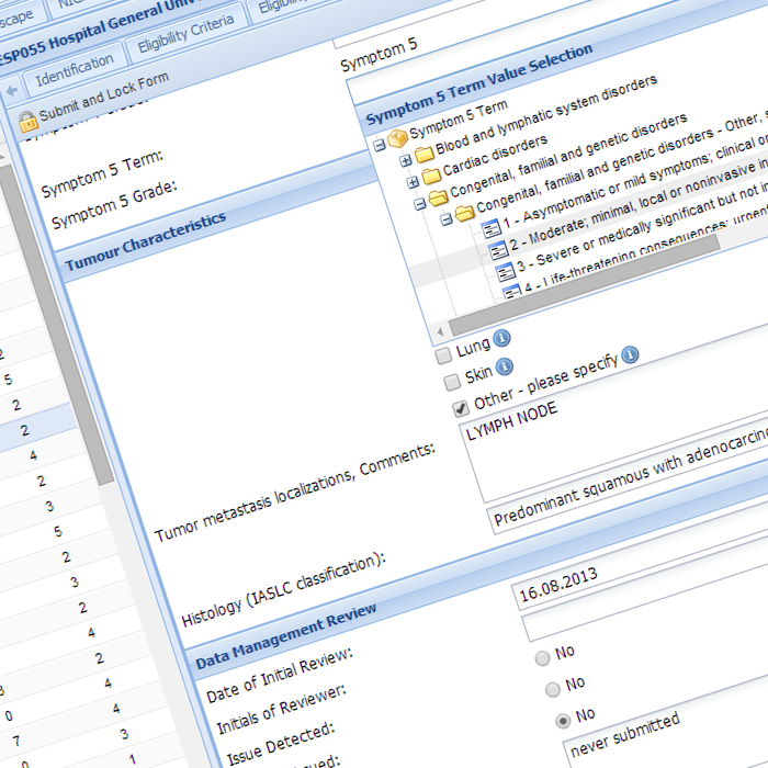 Datimbi Data Entry Screen